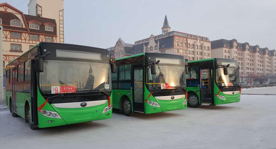 今起24辆新公交车投入使用,市区六条公交线路全换上了新车!