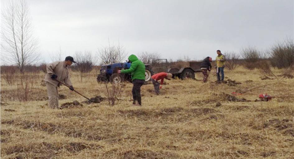 市林业和草原局开展春季造林工作