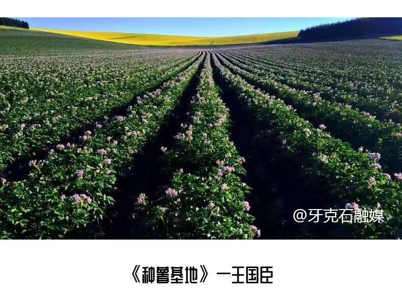 农畜林摄影展美出生态新高度
